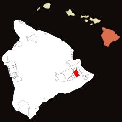 Tree Service Hawaiian Acres