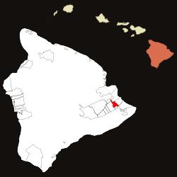 Tree Service Orchidlands Estates
