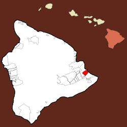 Tree Service Hawaiian Paradise Park